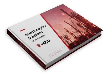 Vidya Technology Portfolio