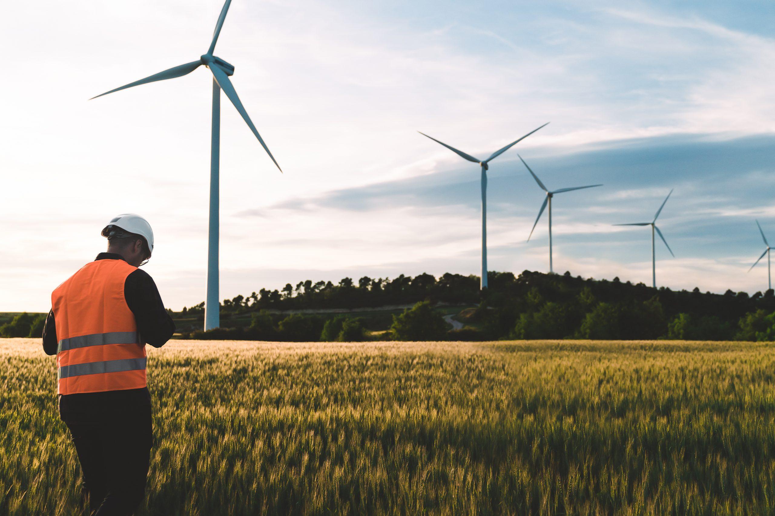 engineer working in renewable wind source